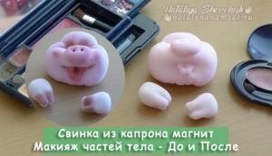 Свинка-магнит-из-капрона-Макияж-до-и-после