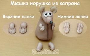 Мышка-норушка-верхние-и-нижние-лапки